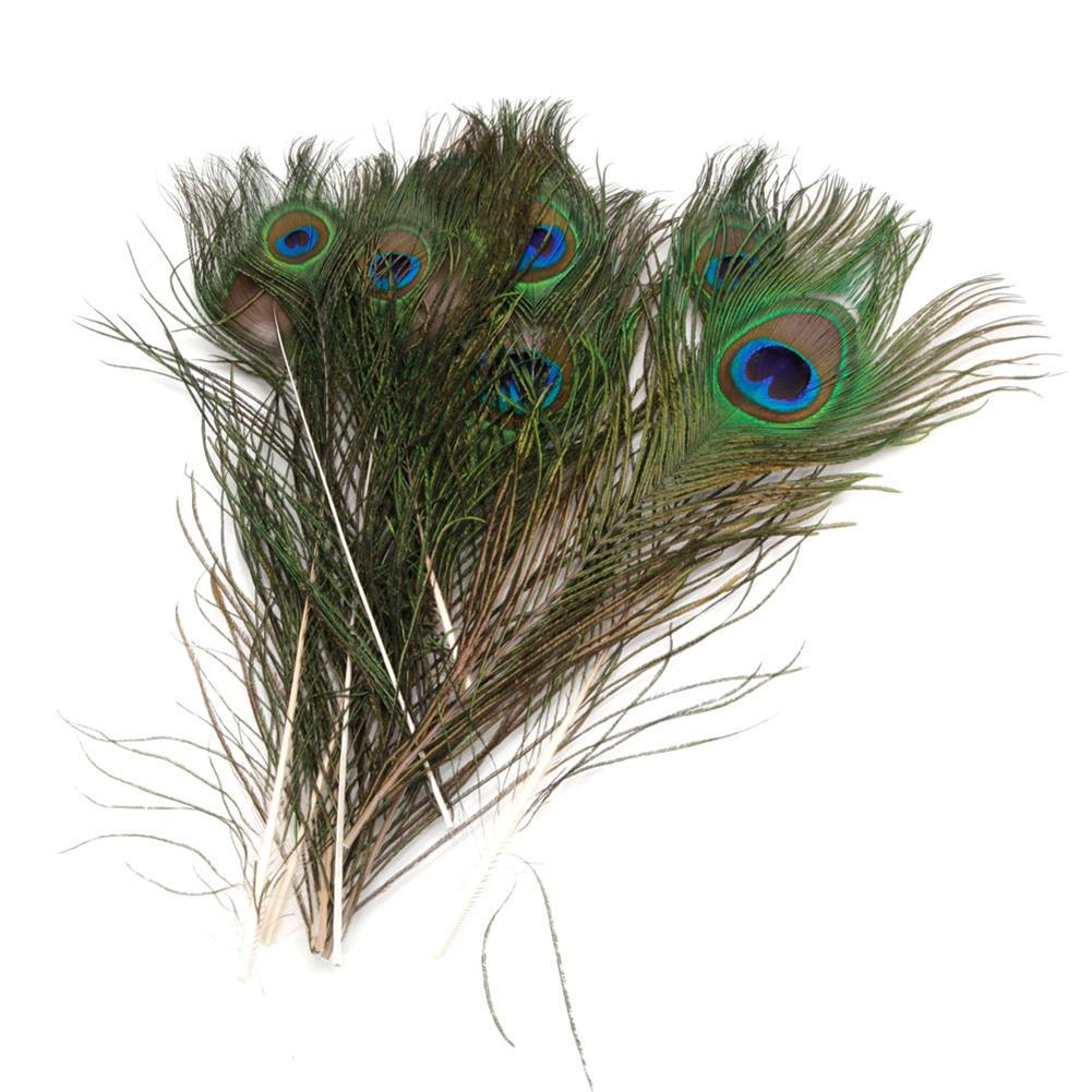 U-House Natural Peacock Tail Feathers 50pcs Real Peacock Feathers Perfect for Wedding Party Home Decorations And DIY Arts Crafts