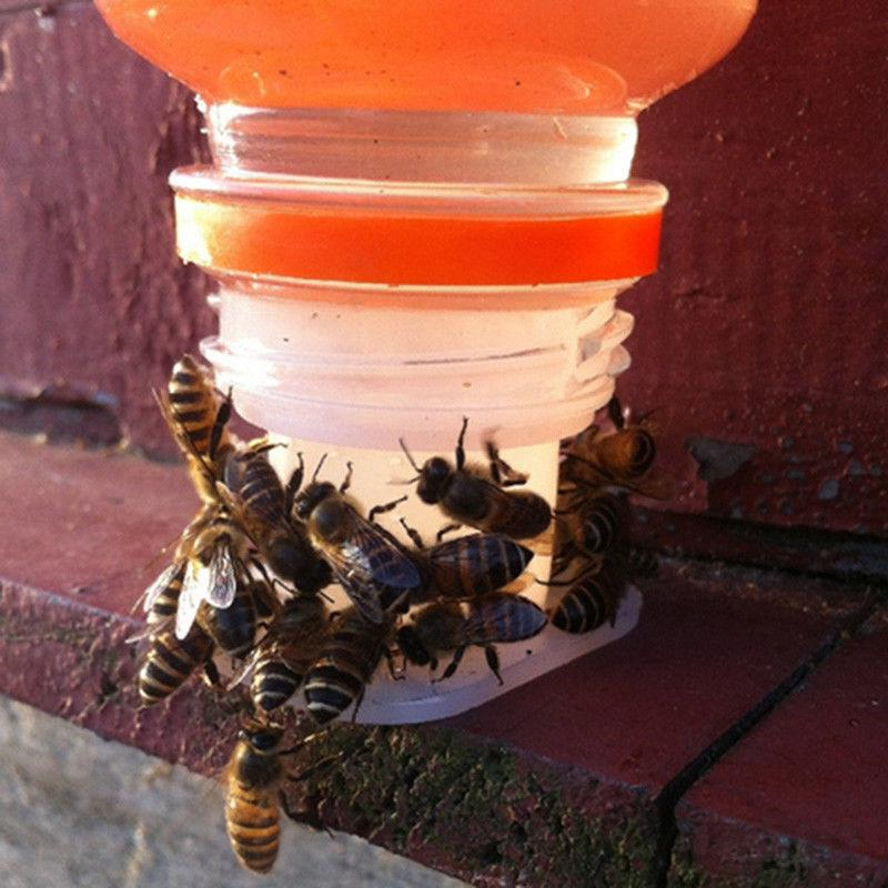 Plastic Bee Feeder Water Drinking Fountain Jar Beekeeper Tool Beekeeping L3C1