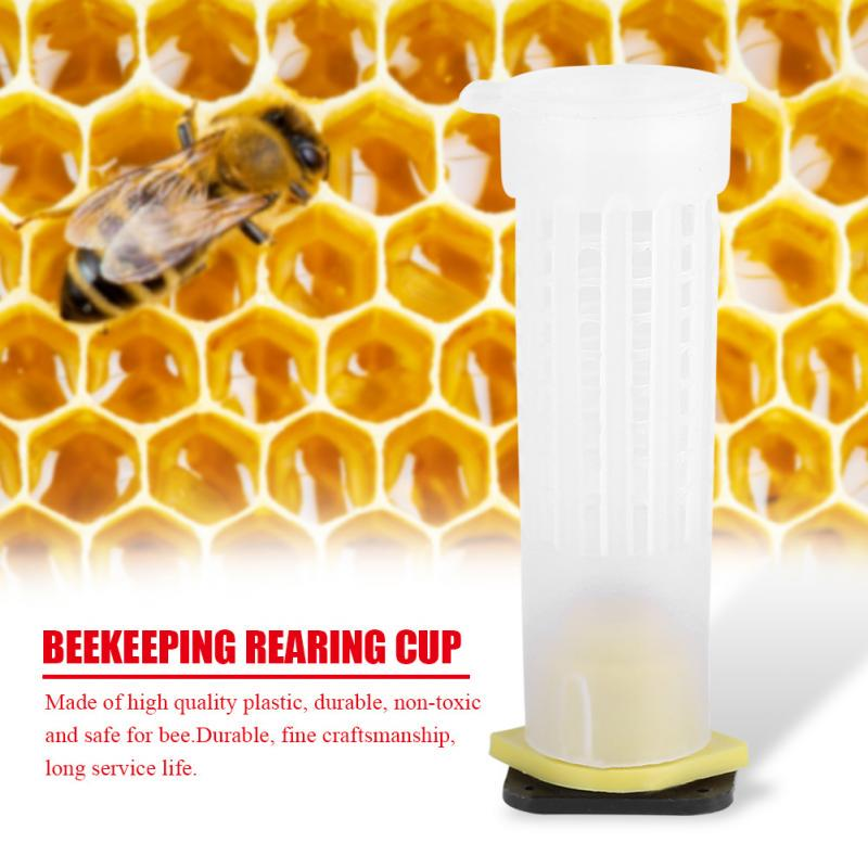 20 Packs Roller cages Durable Rearing Cup Kit Bee Queen Cages Roller Tool