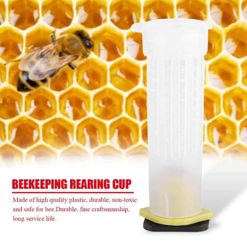 Beekeeping Rearing Cup Kit Bee Queen Cages Roller Beekeeper Equipment Tool