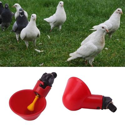 Bird Automatic drinker pheasant drinker Poultry ✔ ✔ ✔ ✔ ✔ ✔ Chicken quail