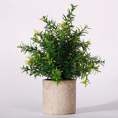 Mini Plastic Plants Small Fake Plant Real Eucalyptus Rosemary Gypsophila with Pot Indoor Green Bonsai Garden Decoration