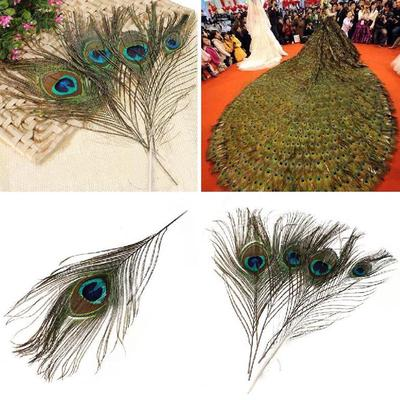 10 Natural Peacock Eye Tail Feathers DIY Craft Decor 10-12cm Mask Millinery