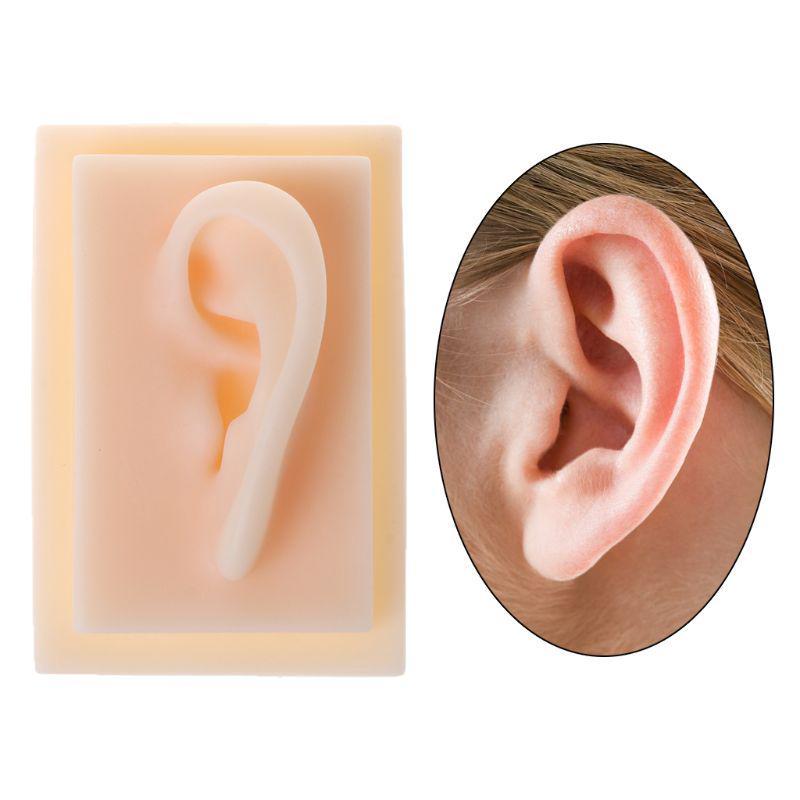 penis cu urechi de șoarece
