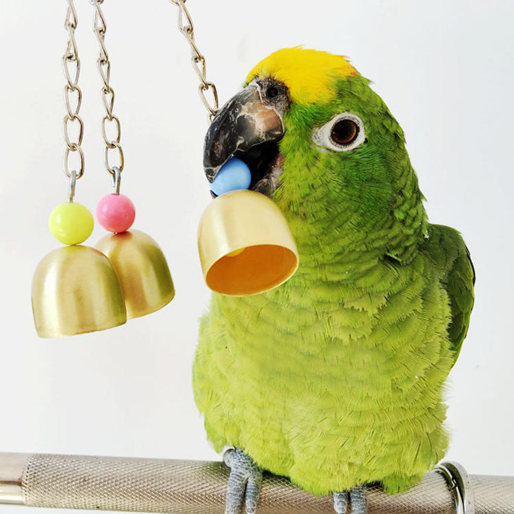 Holz Spielzeug Vogelschaukel mit Metall Glocken für Eichhörnchen Papageien Vögel