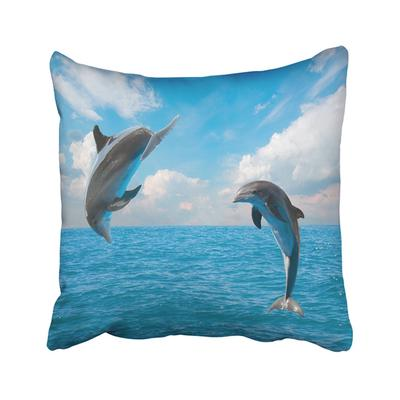 Buy Dolphin Pillow At Affordable Price From 31 Usd Best Prices Fast And Free Shipping Joom