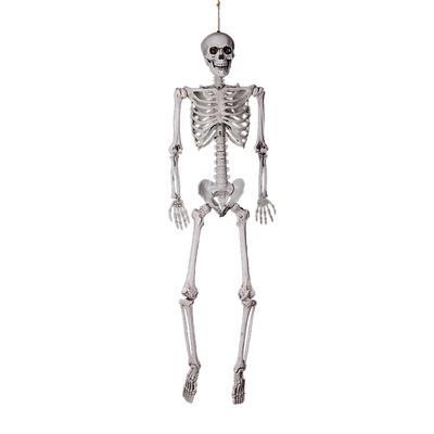 ALOVEMO Halloween Party Decoration Full Size Human Skull Skeleton Anatomical