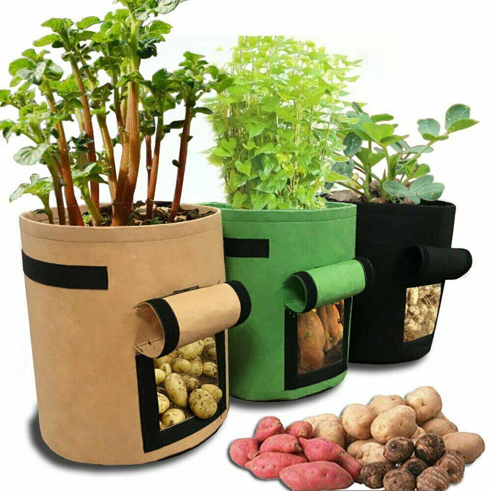 Модный сад Картофель Посадка мешок расти мешок посадки мешок дерево мешок рост завода мешок фото